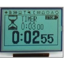 128x64 W-EL STN Gray Transf WT 6:00