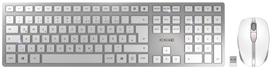 CHERRY Keyboard+Mouse DW 9000 SLIM wireless+Bluetooth silber/weiss CH Layout