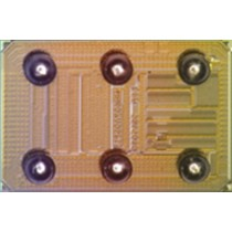 General-Purpose Output-Driver Chips 24V/50mA